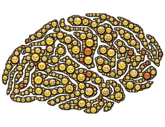 brain-954816_960_720.jpg